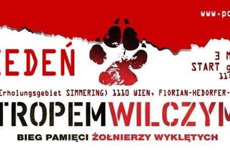 VII BIEG TROPEM WILCZYM - Wiedeń 2019